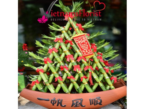A Lucky Bamboo Boat